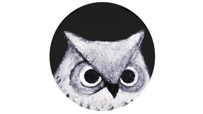 owl fi